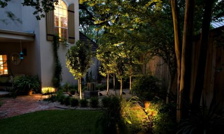 Smart Garden: Guide to the best Essential Outdoor Smart Devices